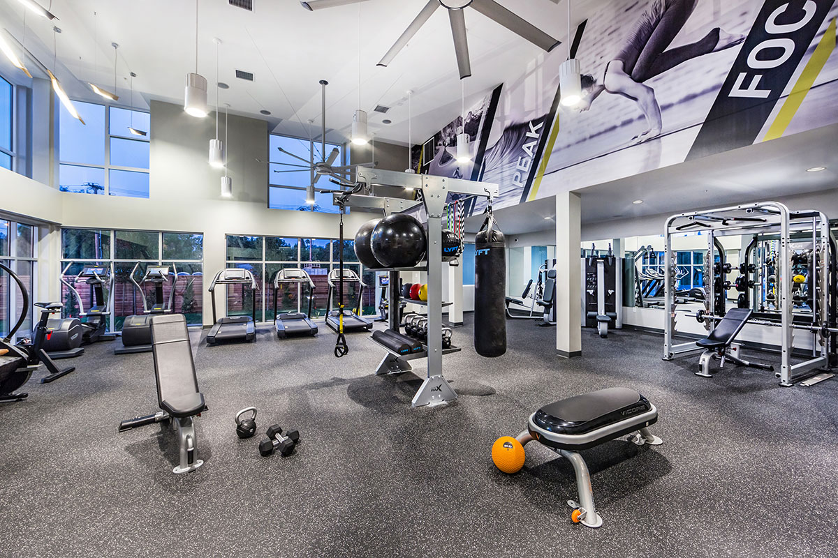Mẫu thiết kế phòng gym theo phong cách hiện đại