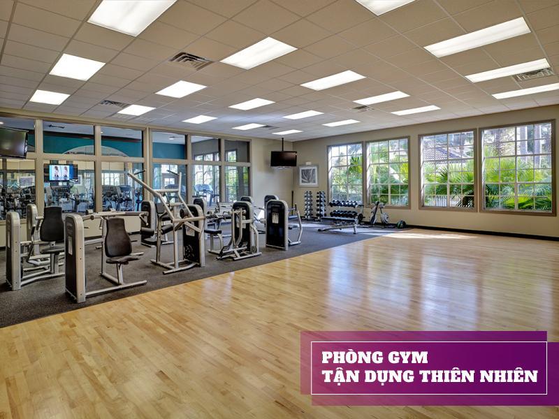 setup phòng gym 500 triệu với không gian gần gũi với thiên nhiên