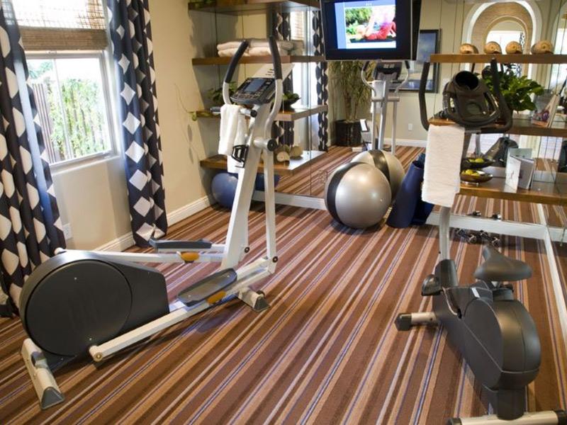 Mẫu phòng gym tại nhà dành cho các bài tim mạch