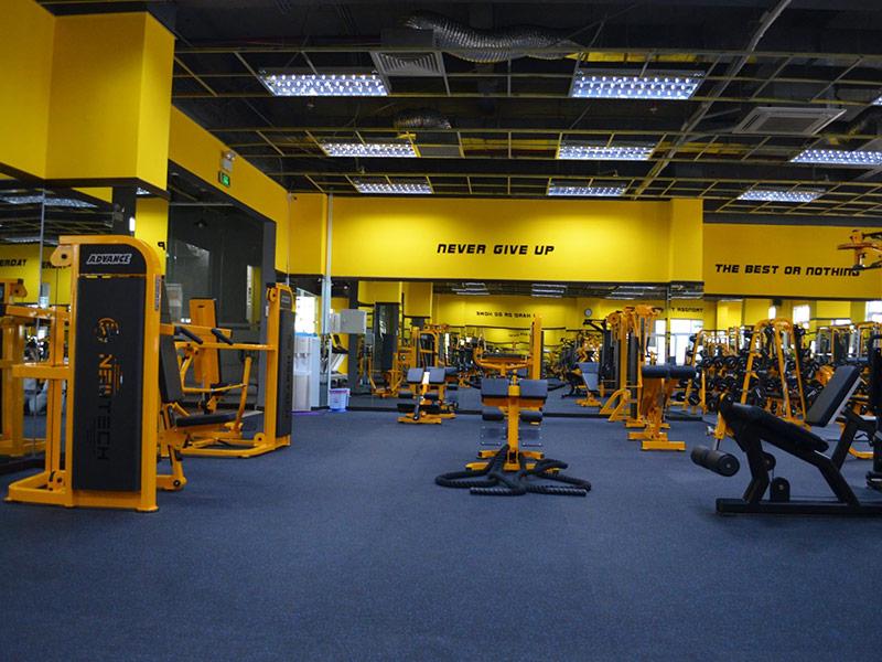 Mẫu thiết kế phòng gym màu vàng 1