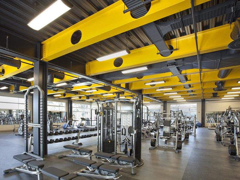 Mẫu thiết kế phòng gym màu vàng 4