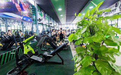 Top 5 mẫu thiết kế phòng gym màu xanh lá cây hợp với người mệnh Mộc
